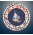 SPA theme with drop vector image vector image