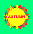card with colorful autumn leaves vector image