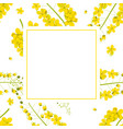 cassia fistula - golden shower flower banner card vector image