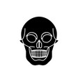 glyph icon of the skull vector image