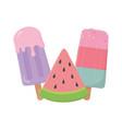 ice cream in stick slice watermelon isolated vector image