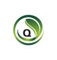 leaf initial q logo design template vector image vector image