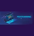 banner software development programming web site vector image