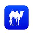 camel icon digital blue vector image