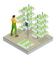 isometric modern smart industrial greenhouse vector image vector image