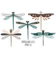 set folk art decorated dragonflies vector image vector image