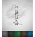 X-rays feet icon vector image