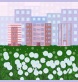 city buildings with dandelions flowers green park vector image