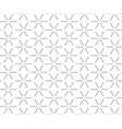 abstract geometric pattern with lines vector image vector image