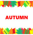 autumn banner with multi-colored leaves vector image vector image