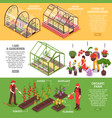 greenhouse banner set vector image vector image