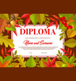 kids diploma with autumn leaves oak birch rowan vector image vector image