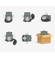 set cute gray cats with geen eyes vector image