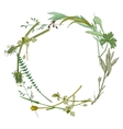 wreath made with wild herbs vector image