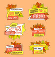 autumn half price advertising emblems foliage vector image vector image
