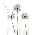 Meadow weeds dandelions silhouettes vector image vector image