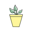 natural plant with leaves and ecology care vector image vector image