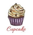 Cupcake with cream and chocolate sketch vector image