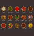 a variety of spices vector image