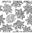 anise seamless pattern vector image vector image