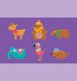 cute animals set capybara bear elephant vector image vector image