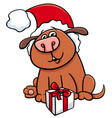 dog with gift on christmas vector image vector image