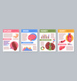 human internal organs posters set vector image
