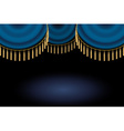 satin or velvet curtain with lace or thread on vector image