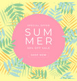 special offer summer sale banner tropical vector image