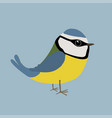 a cute blue tit vector image vector image