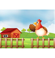 A farm with a hen at the fence vector image vector image