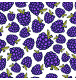 blackberry seamless pattern doodle berry design vector image vector image