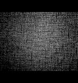 monochrome with texture vector image vector image