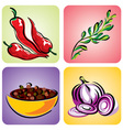 set color spices vector image vector image