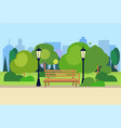 urban park wooden bench street lamp green lawn vector image