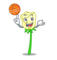with basketball white rose in the shape cartoon vector image vector image