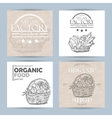 collection of four vegetable banners vector image