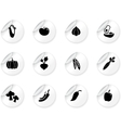 Stickers with vegetables icons vector image