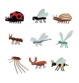 collection insects cartoon vector image vector image