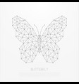 polygonal insect abstract geometric butterfly vector image vector image