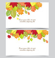 autumn leaf in colors vector image vector image