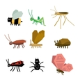Collection of insects cartoon vector image vector image