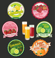 collection of organic fruit retro design labels vector image