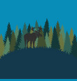 Forest landscape with elk and forest of fir trees