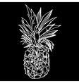 Hand drawn set of ripe pineapples vector image