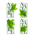 nature frames organic leaves emblems stickers vector image vector image
