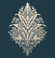 ornament design vector image vector image
