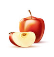 realistic red apple fruit slice 3d isolated vector image vector image
