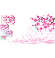 sakura is losing petals curved branches of a vector image vector image