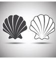 seashell vector image vector image